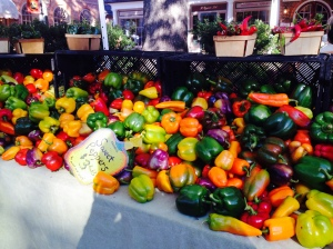 Beautiful peppers (in November!) from Amy's Garden